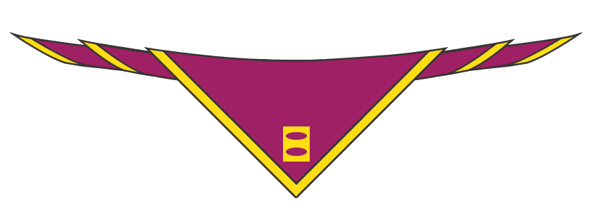 Eling Sea Scouts scarf