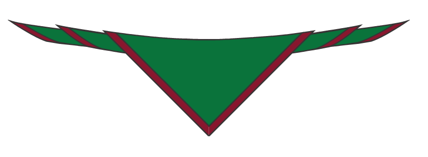 Testwood scout scarf