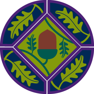Young leader badge and mission stripes